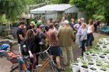 In den Prinzessinnengärten lernen die Teilnehmerinnen das Konzept der Landwirtschaft in der Stadt kennen. Foto: Berliner Energieagentur